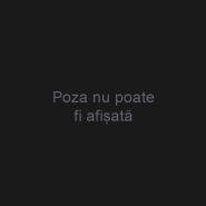 Darisialex